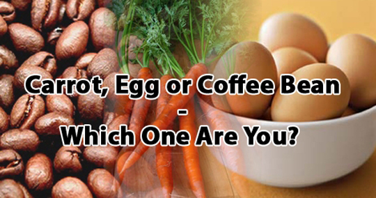 Post image for Carrot, Egg or Coffee Bean -Which one are you?